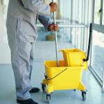 vacuum carpets and mop wood, tile, and linoleum floors